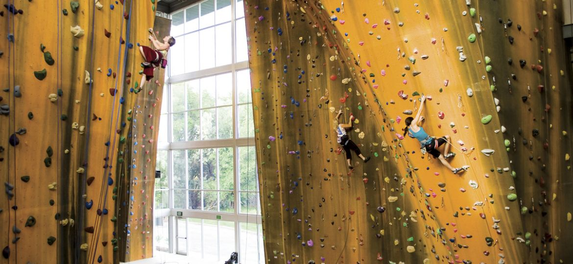 Momentum Climbing wall by Walltopia